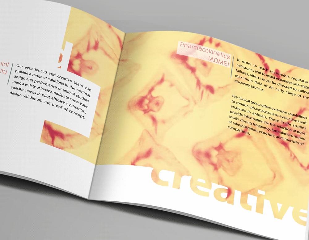 מעבדות Pre-Clinical - עיצוב ברושור