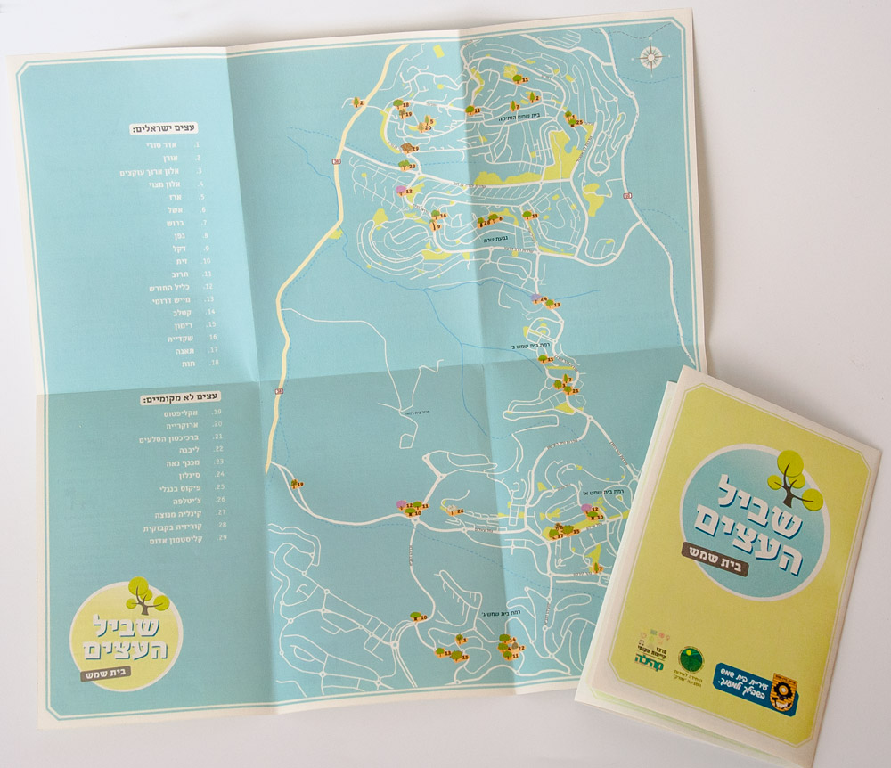 שביל העצים - עיצוב מפה מאוירת של עצים בבית שמש